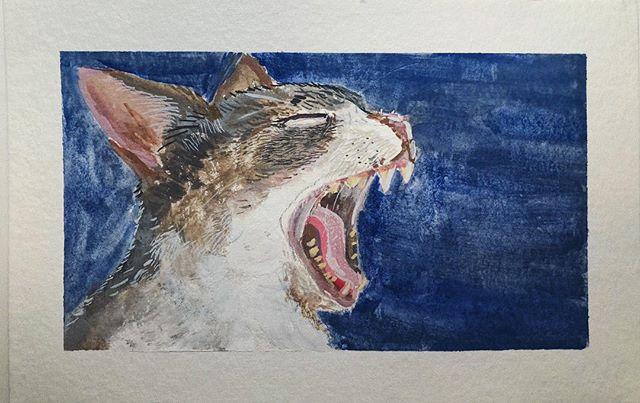 Yawning bodega cat - gouache sketch