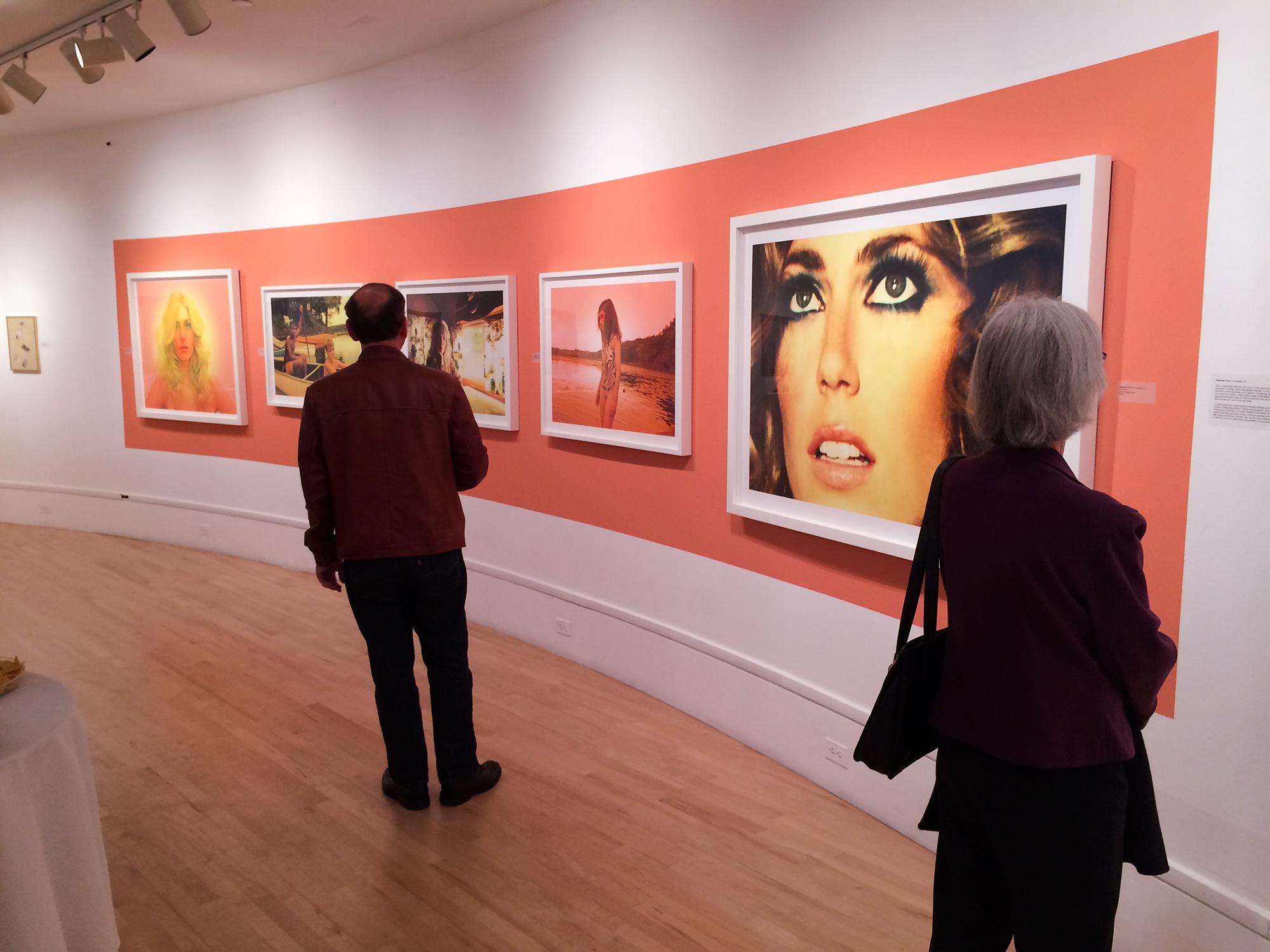 Bedford Gallery, Jealous Curator Show, Walnut Creek, CA
