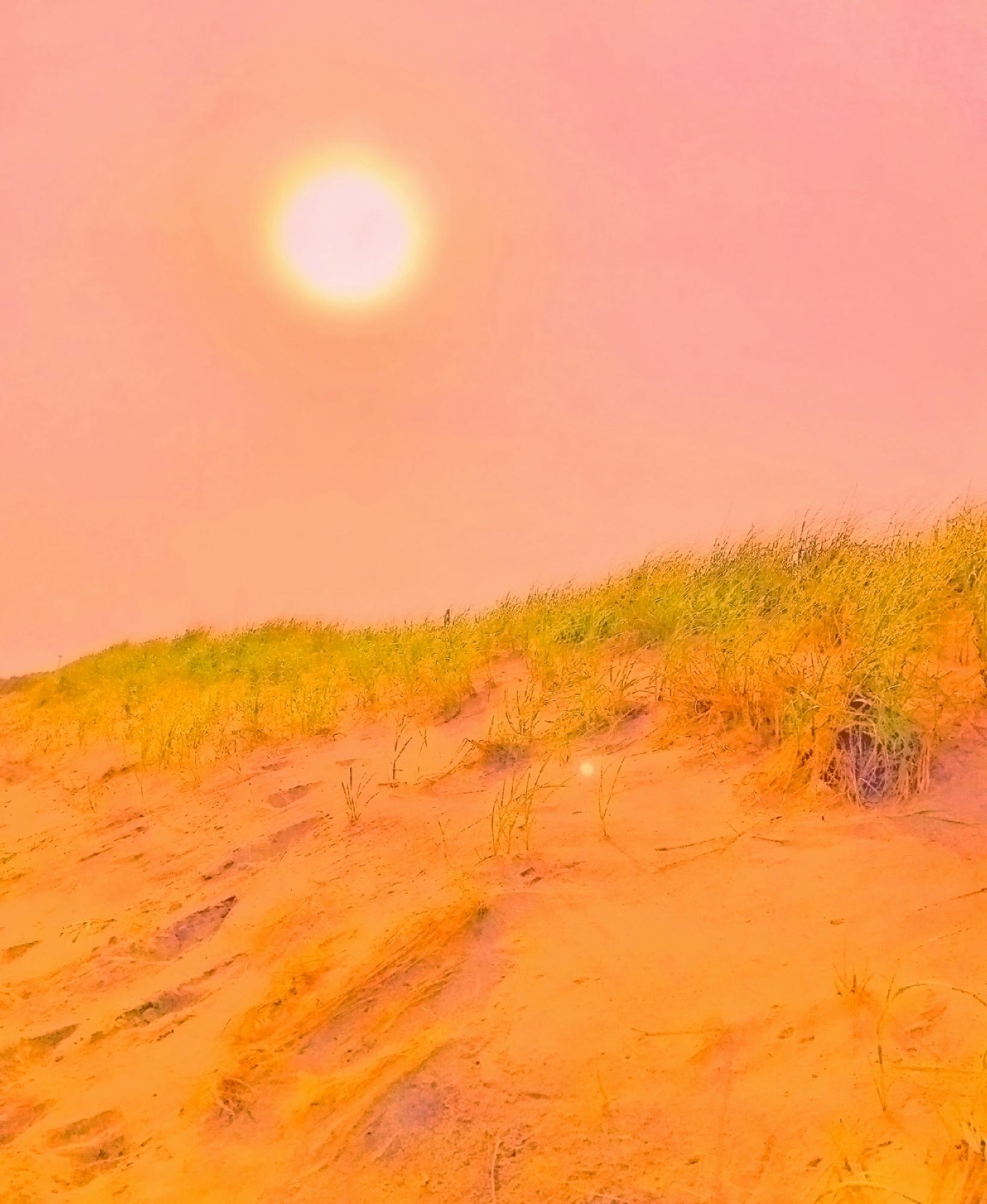 sunset-IMG_2443sq.jpg