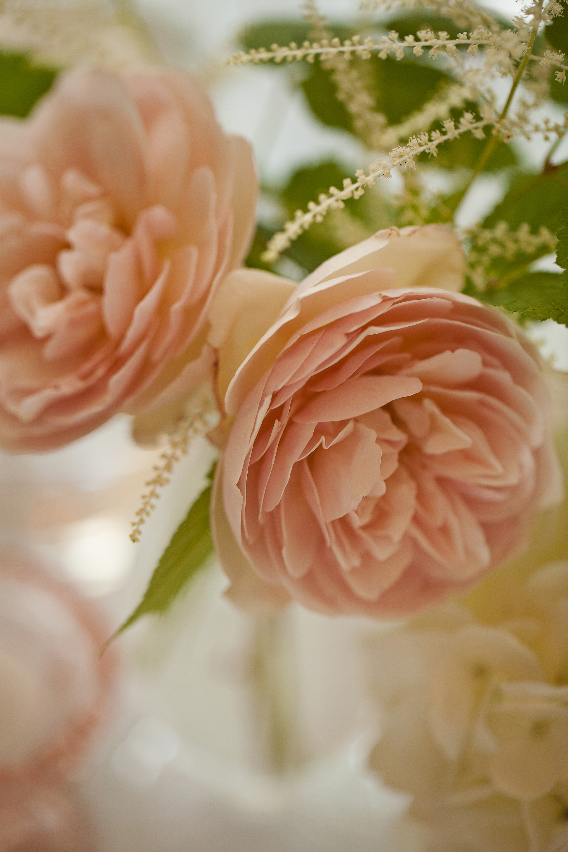 Philosophy Flowers, J&J Photography, CeCe Hampton Events