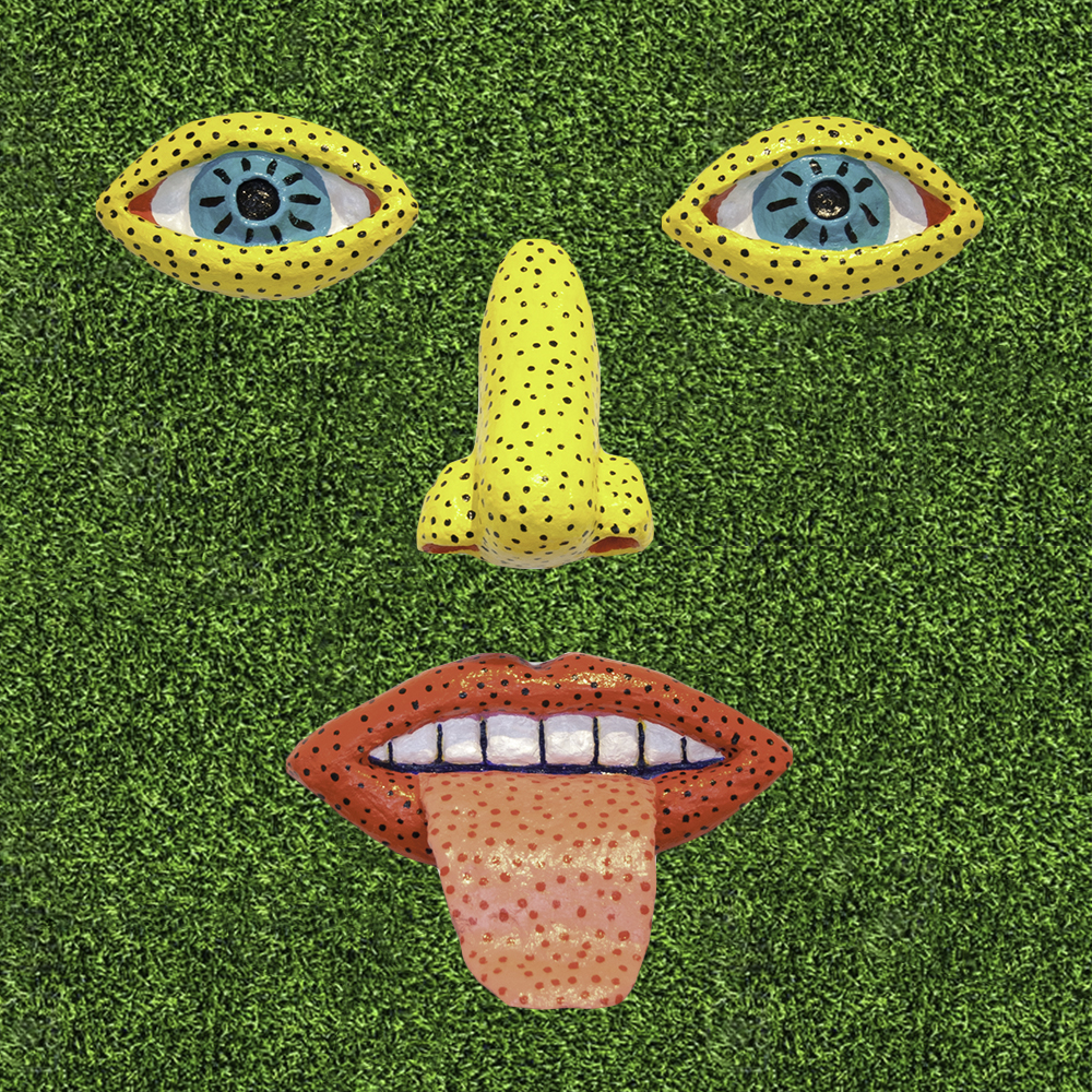 face on turf.jpg