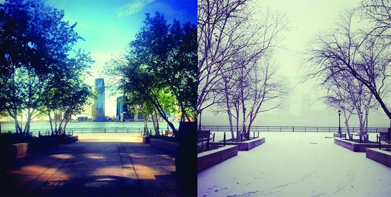 westside-seasons-01.jpg