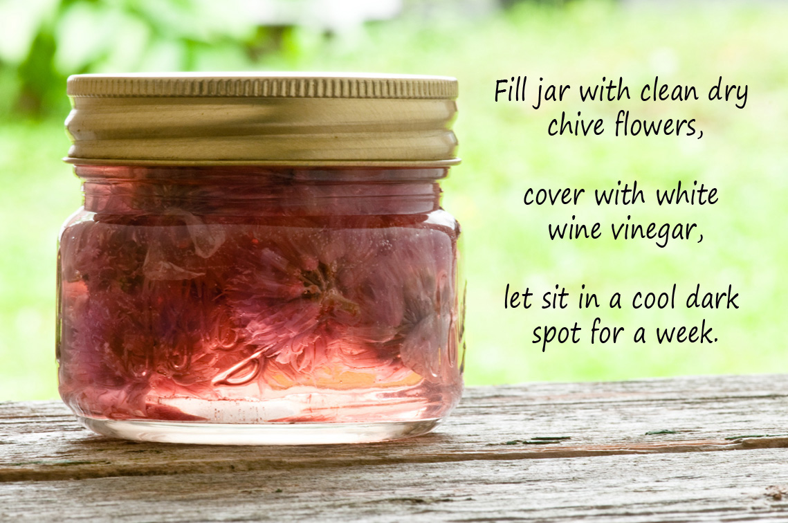 pickled chive flowers in mason jar recipe