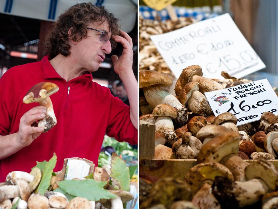 Funghi Porcini Freschi at the mercato in Alba, Italy