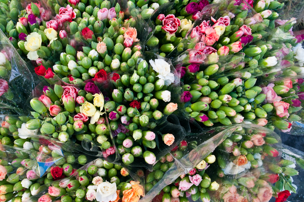 Sanremo flower market
