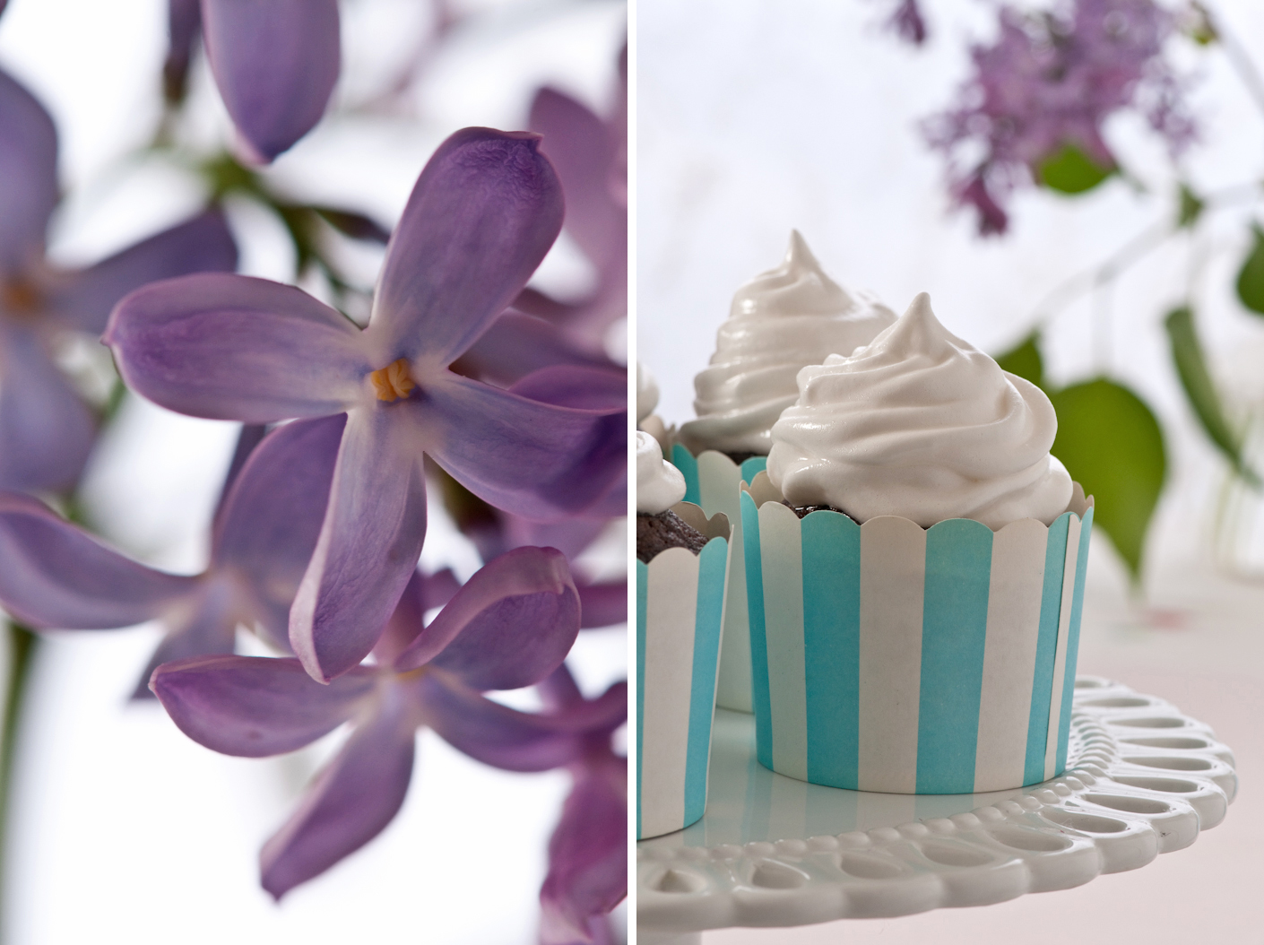 llilacs and chocolate cupcakes