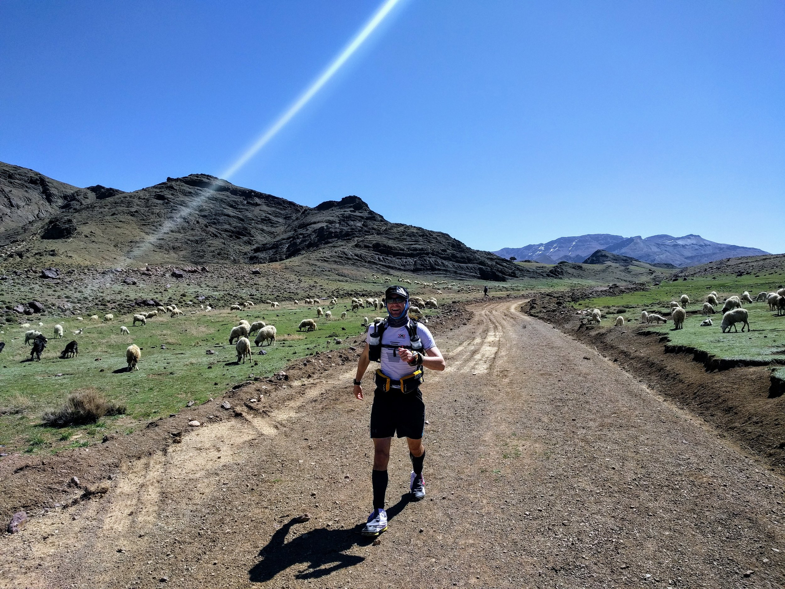 Paul Broadway navigating the sheep of the High Atlas on Day 3