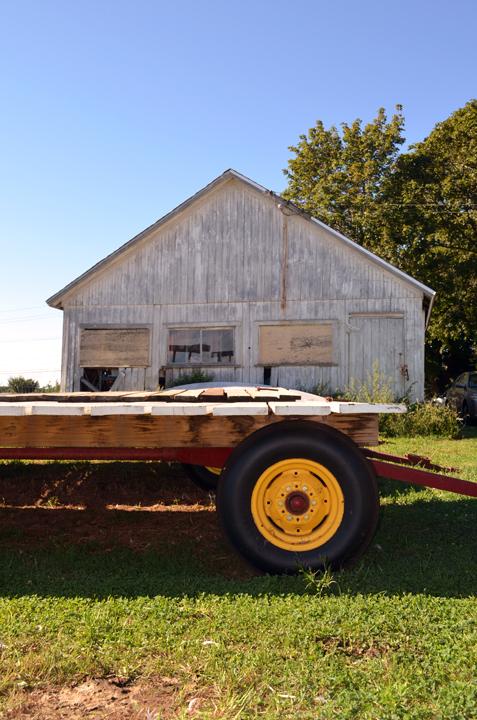 Tyylwd Farm