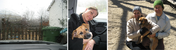 Left:  Rainy Saturday, March 8th, 2008 we adopted Trixie.  Middle : Driving back to New York City.  Right : First time at the dog run and first family photo