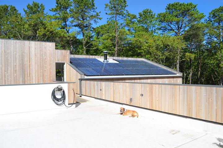 Rooftopgarden_solar.jpg