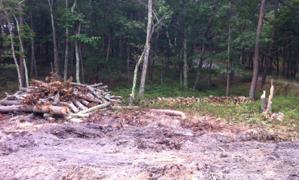 Stacked Oak wood