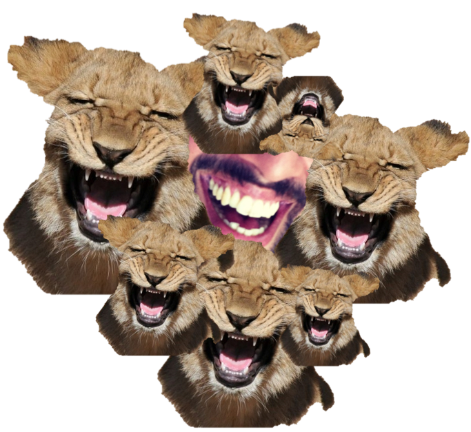 laugh like a lion