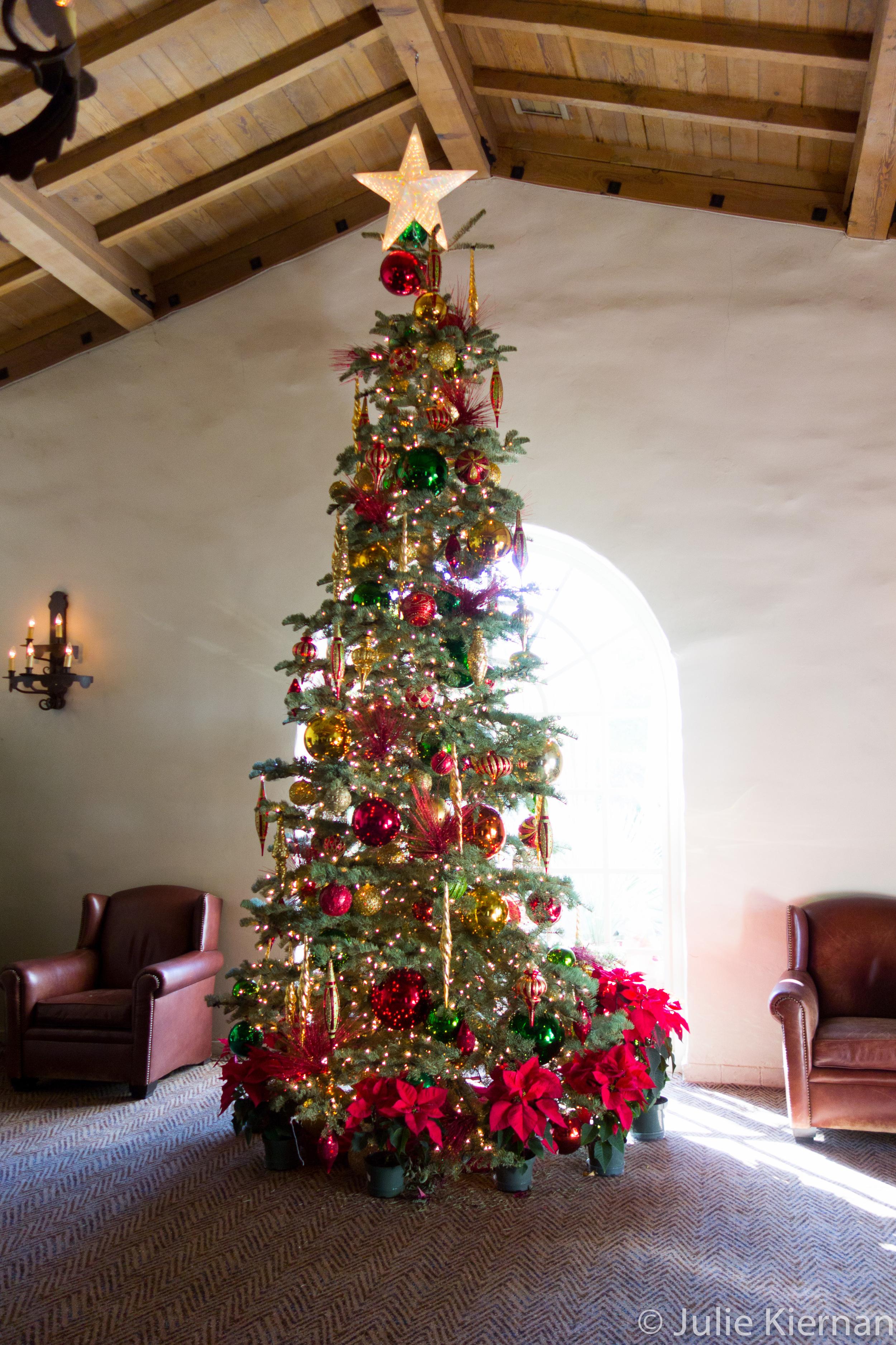 14:52 2 Tree inside the lodge