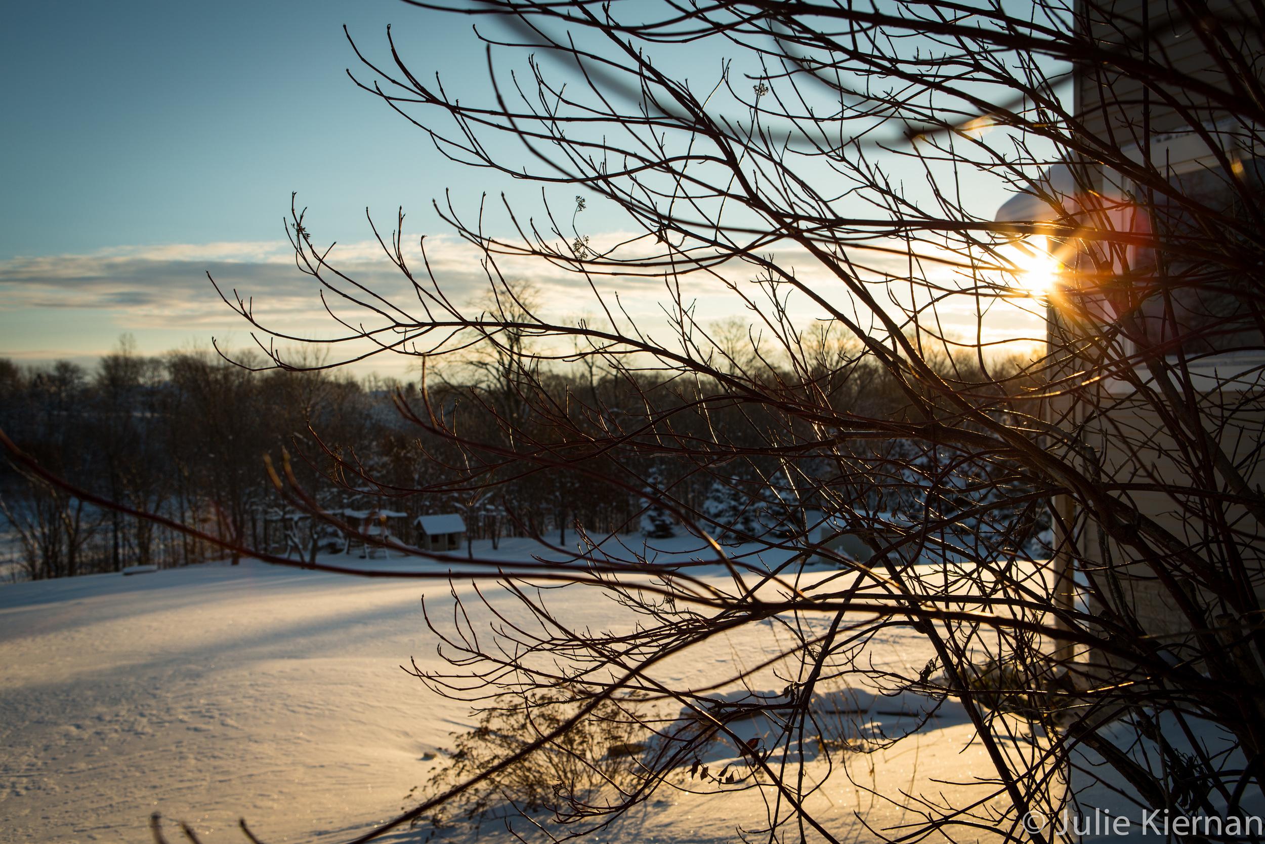 17-52-1 winter scene-0555.jpg