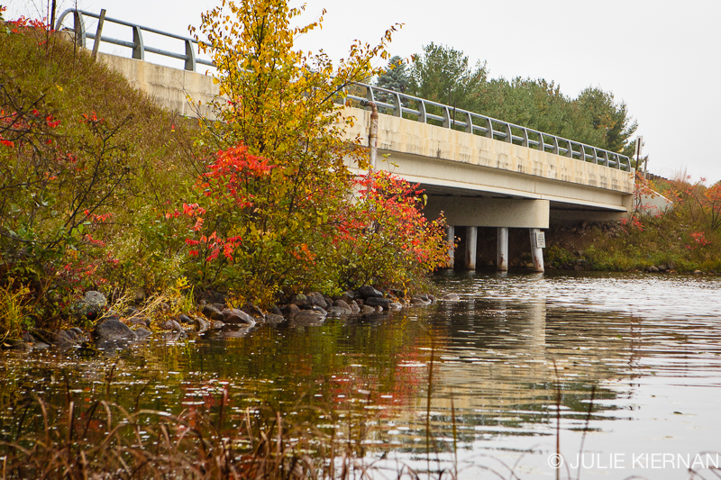 52:2:2c Bridge with Fall Colors in Crosslake