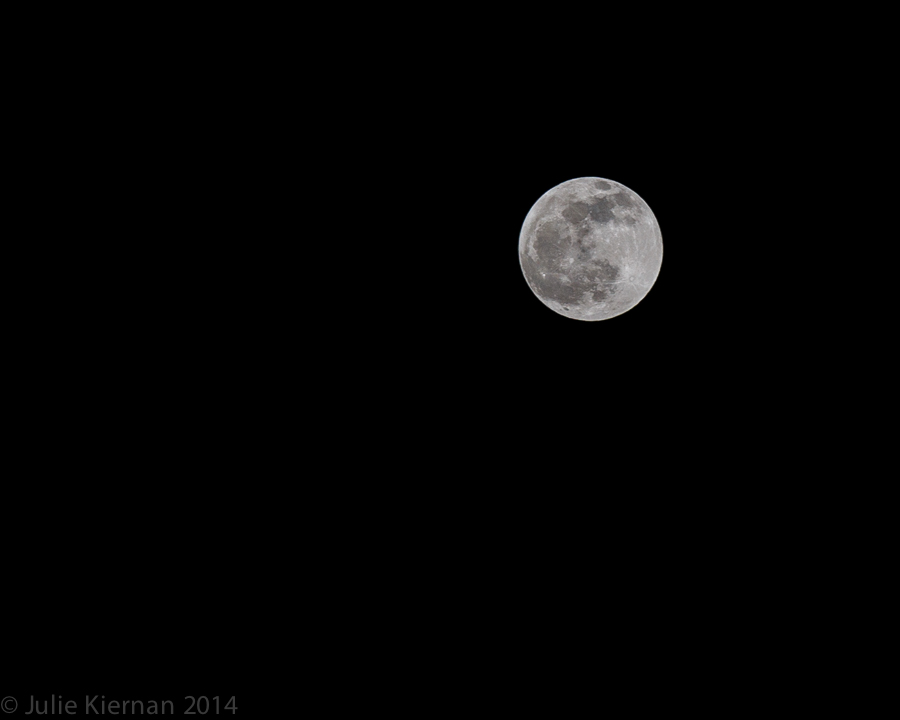 The Moon before the eclipse at about 10:00pm