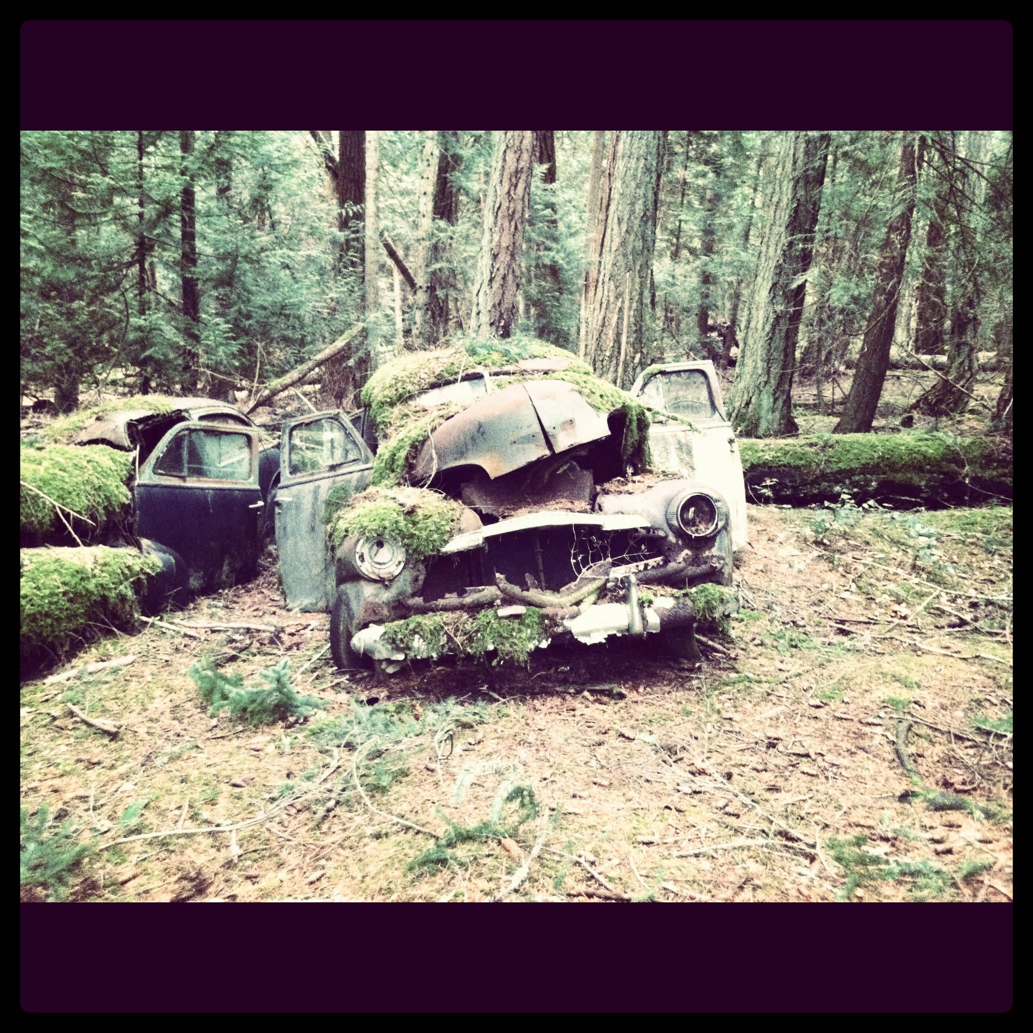 ghost cars2.JPG