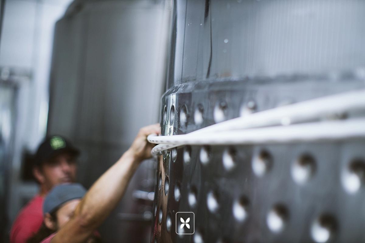 Black Apple Cider - Springdale Arkansas - Production - 2019-7.jpg
