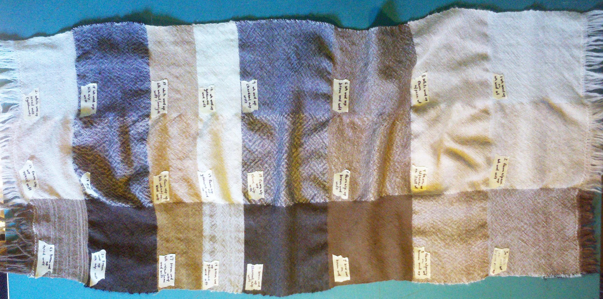 The sample blanket