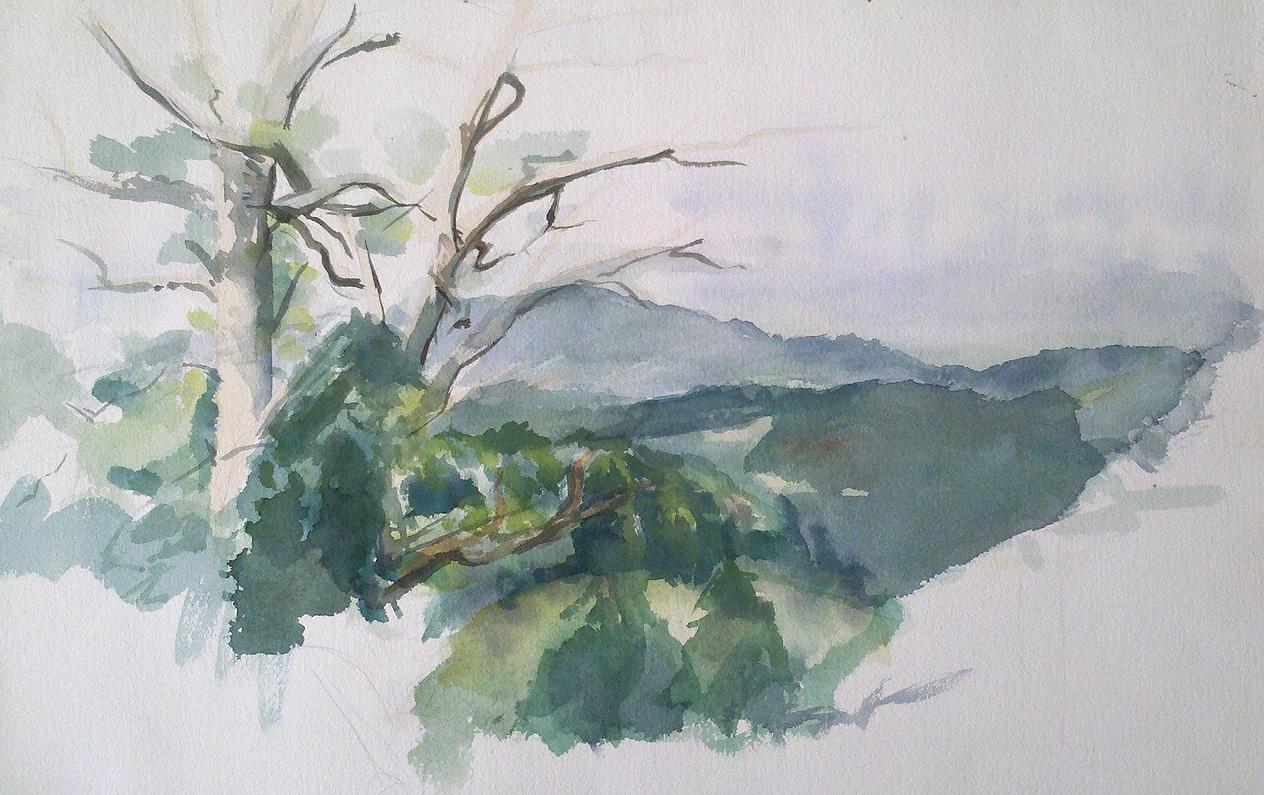looking toward Barnet Mountain from little pine.jpg