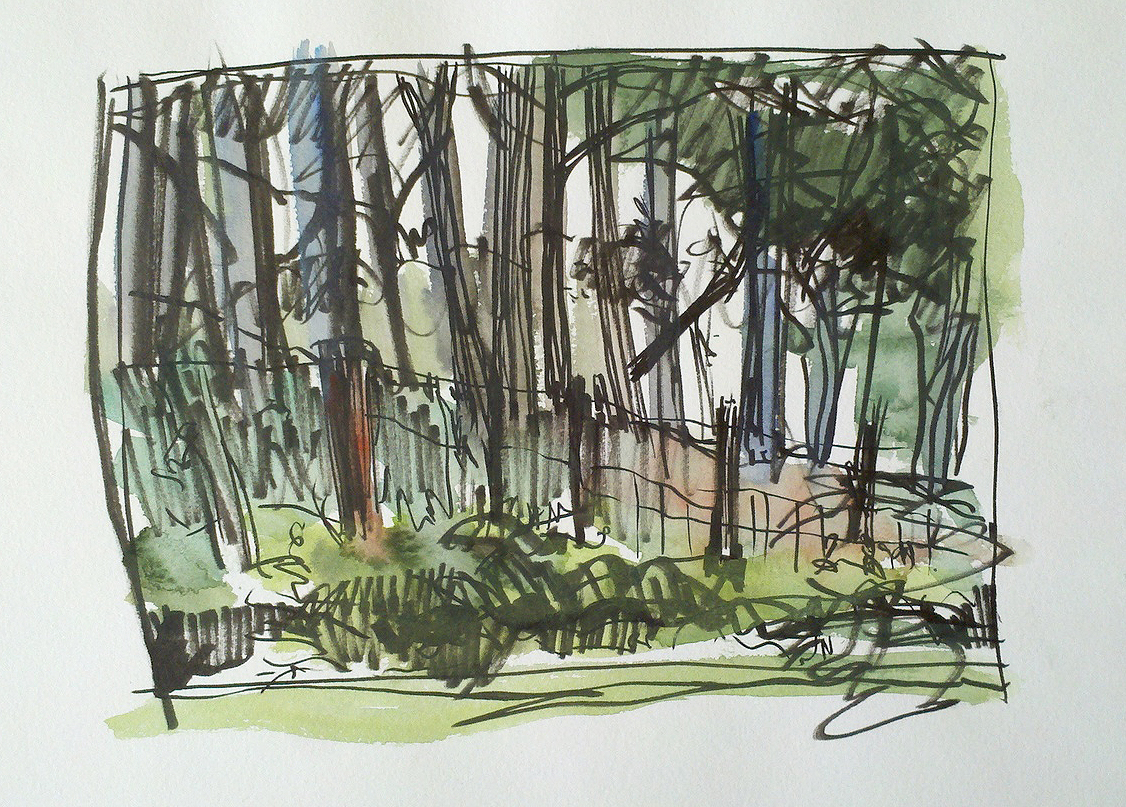 fence in the woods.jpg