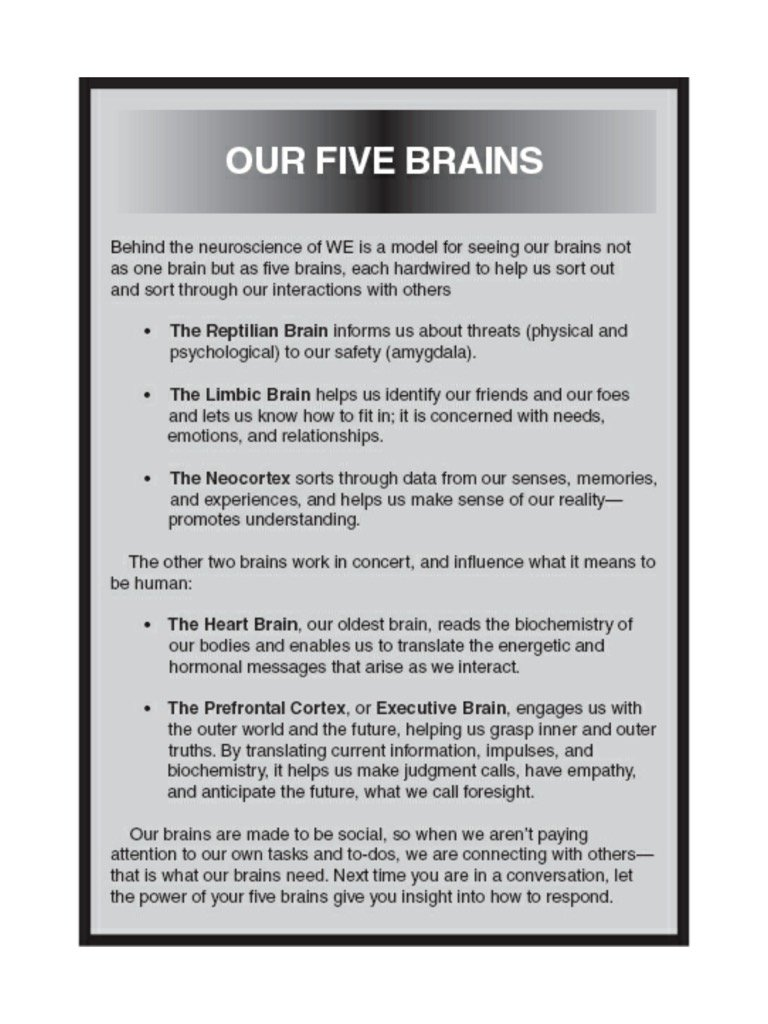 Which brain do you operate from?