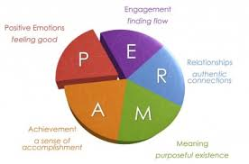 Martin Seligman's PERMA model - understanding how to help people search for their happiness in their work assists you have rich conversations.