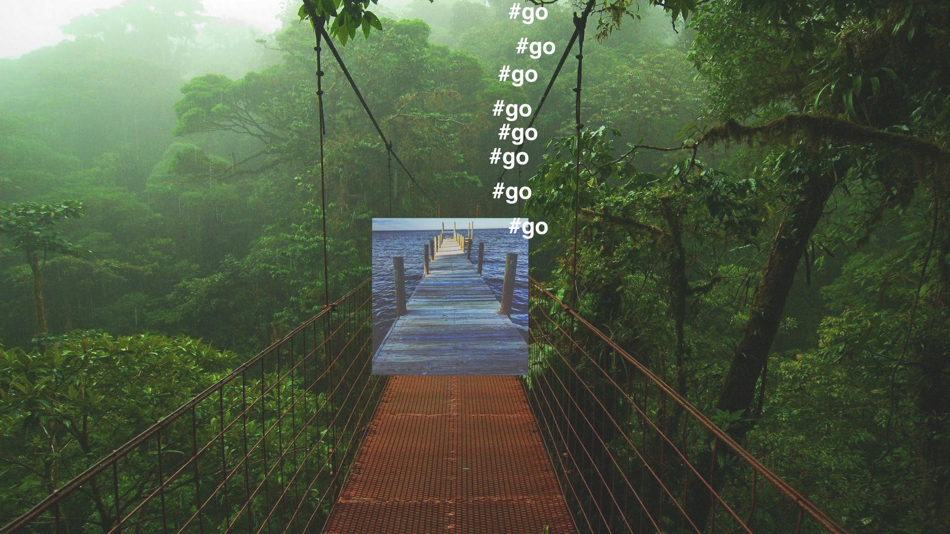 01-REI-BRIDGE-02-01.jpg