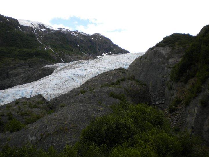 Exit Glacier 2010