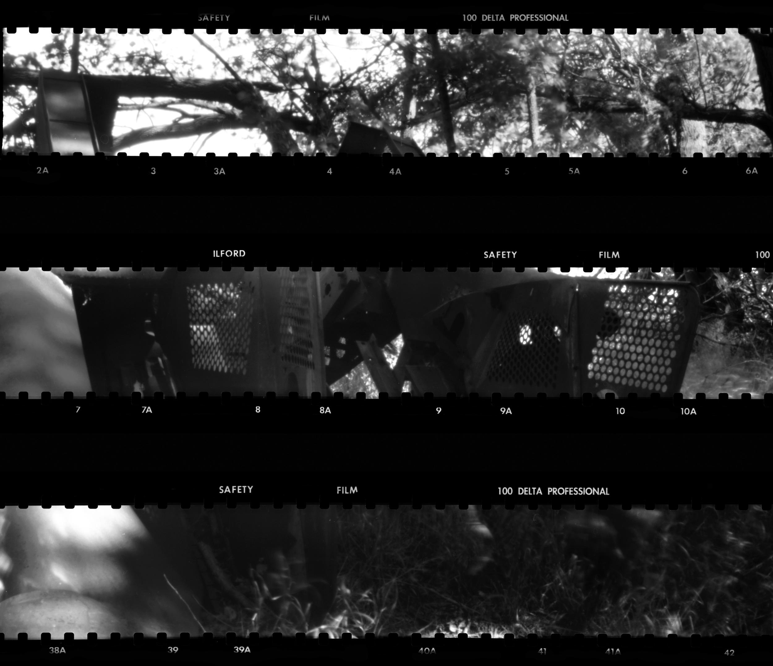 Scan Set 2.jpg