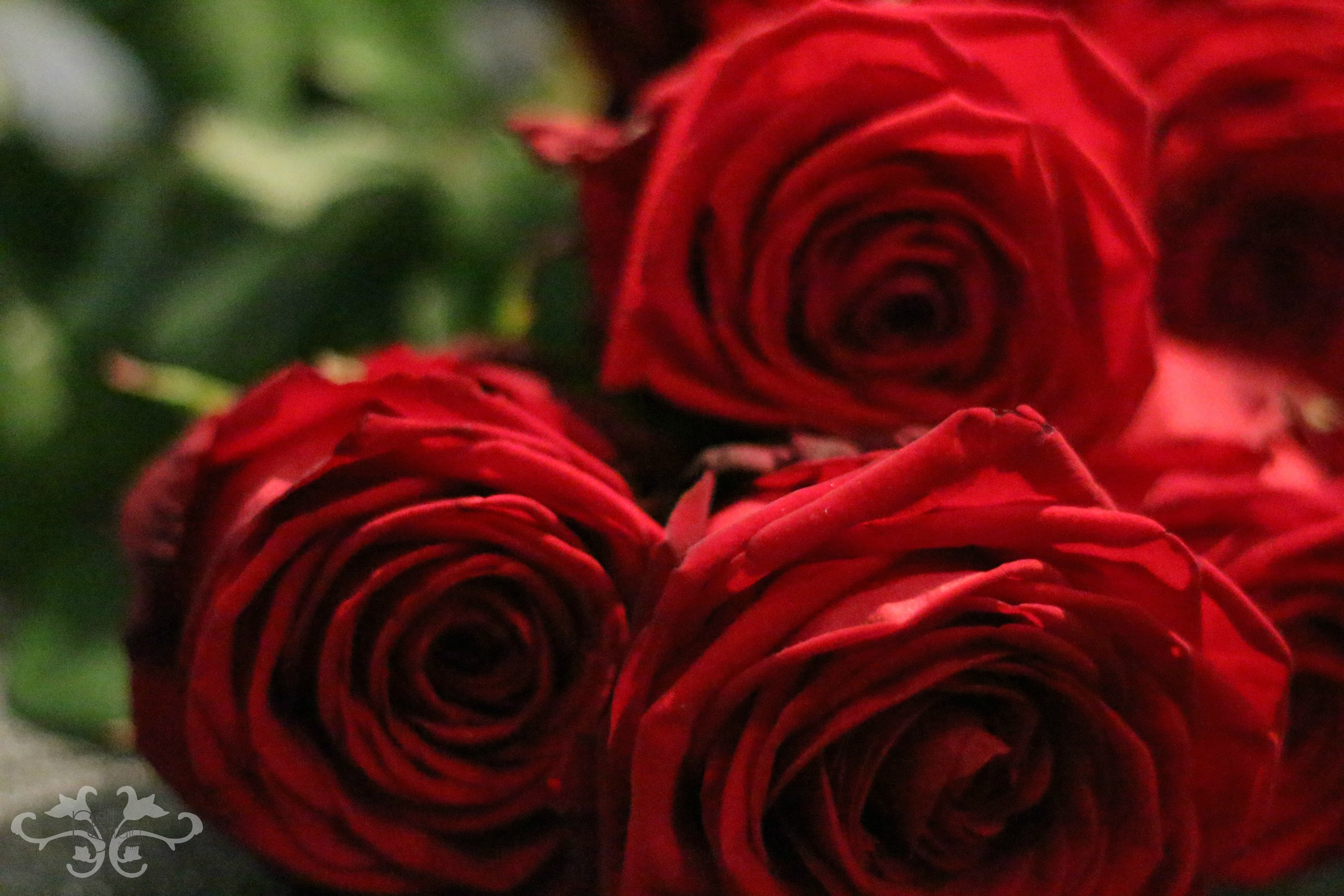 London's most luxurious red Roses selected especially for Neill Strain Floral Couture