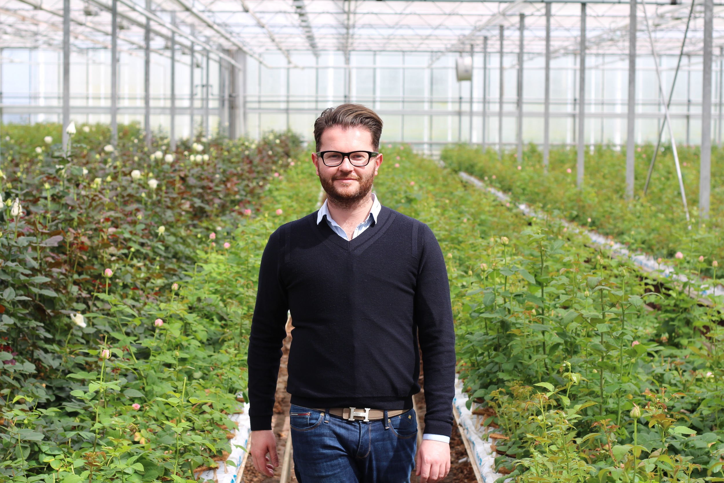 """Visiting Holland's best Rose breeders and growers to source blooms for """"A Celebration of the Rose"""""""