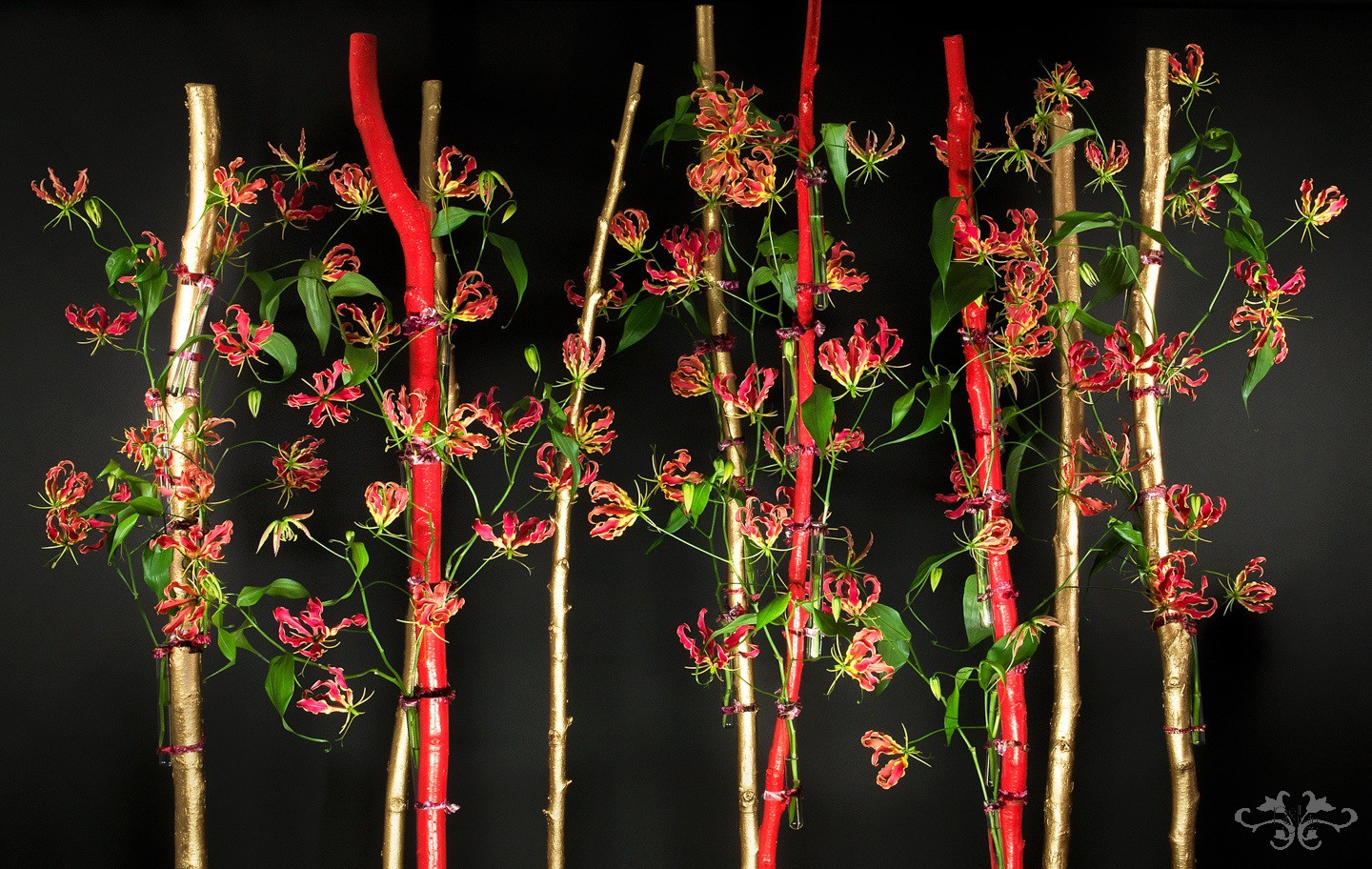 Birch trunks sprayed in gold and bright red forms a base from which the Gloriosa can dance.  All photography by John Nassari