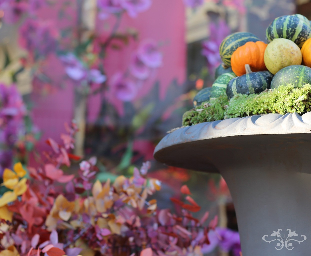 autumn inspirations by Neill Strain.jpg