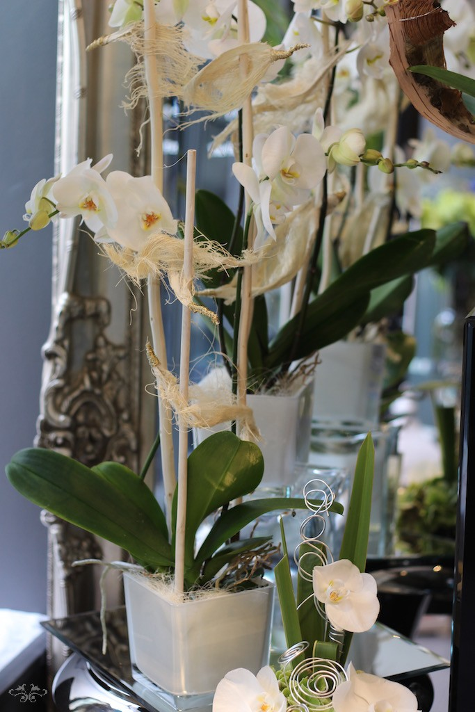 orchid planters Neill Strain.jpg