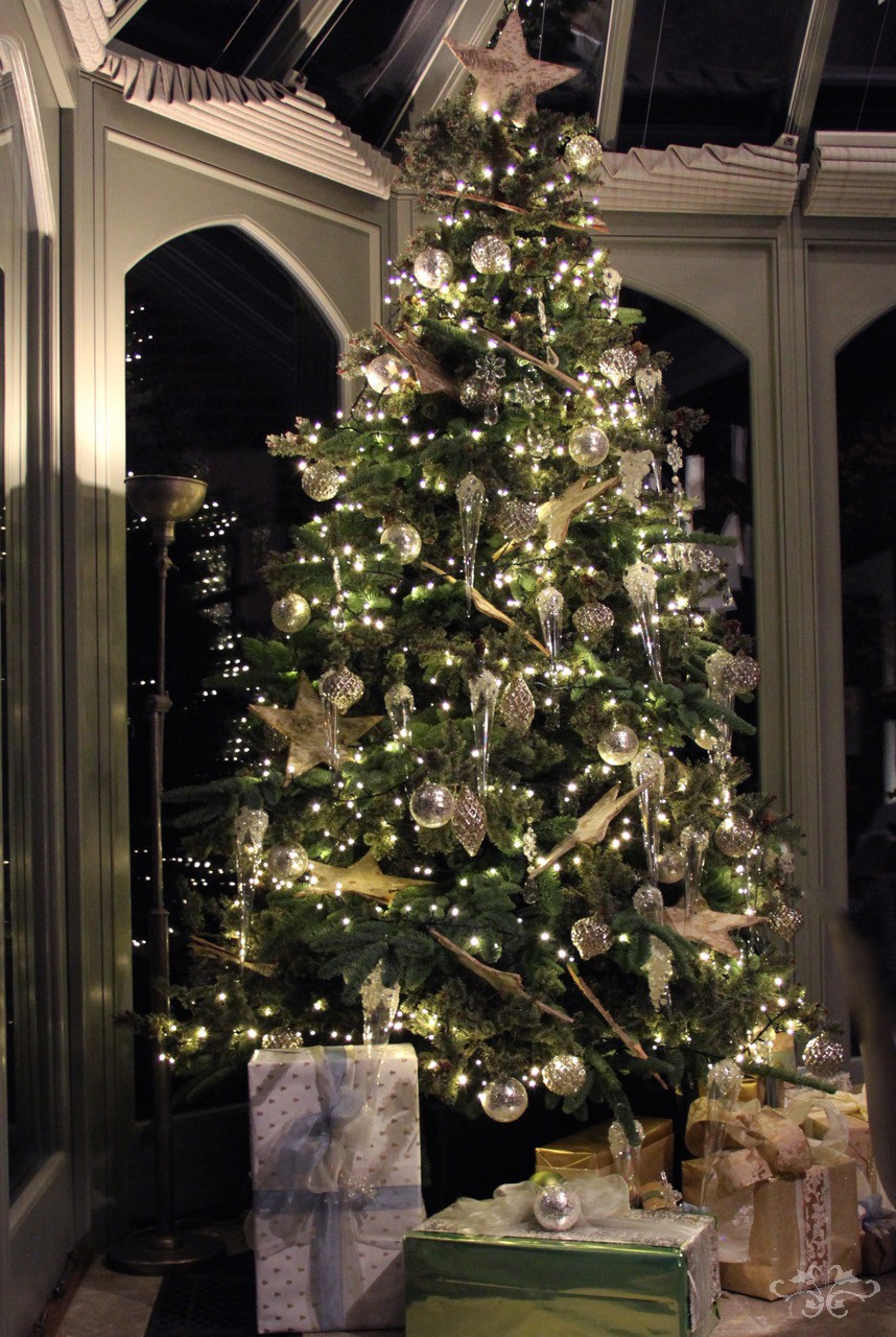 Best Christmas Trees.Where To Find The Best Christmas Trees And Christmas Tree