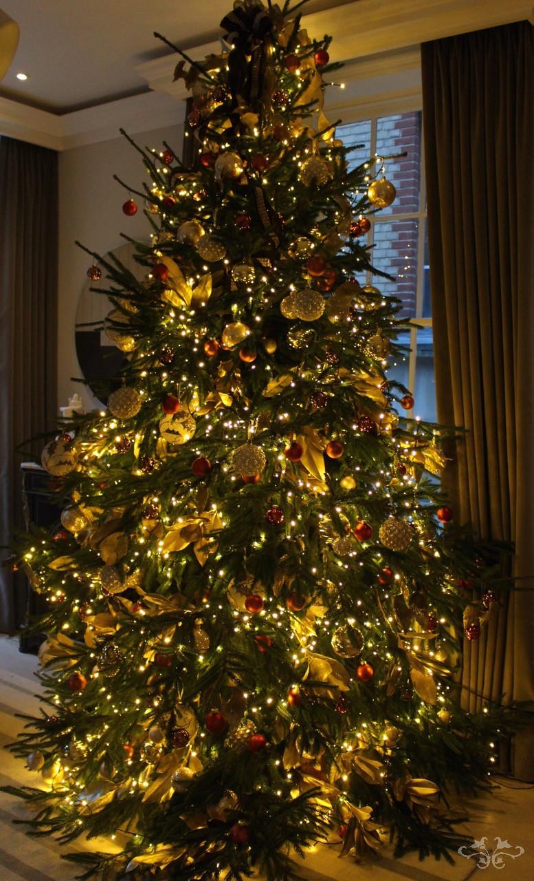 Neill Strain Christmas Tree shimmering.jpg