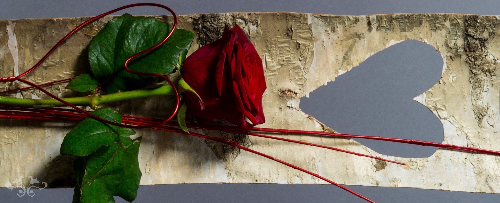 80 cm stem of Red Naormi Rose with wired heart and cut-out heart of rustic Birch bark.