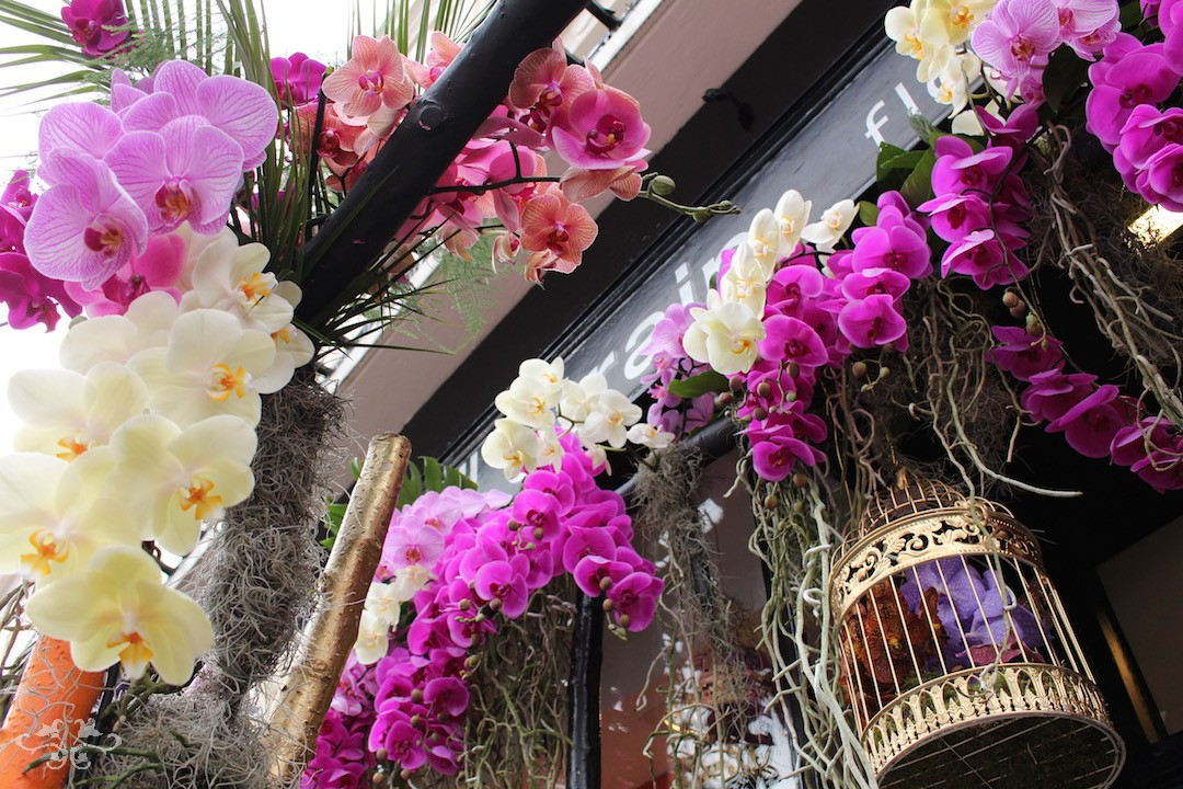 Fresh Orchids cascading down over the entrance to Neill Strain's Belgravia boutique, The Flower Lounge