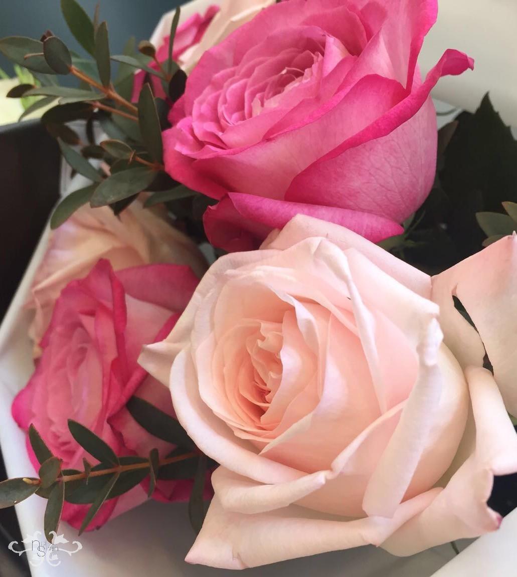 Neill Strain summer flowers.jpg