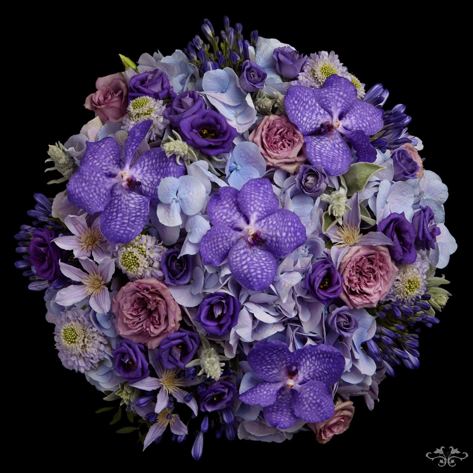 Blue summer flowers Neill Strain Belgravia