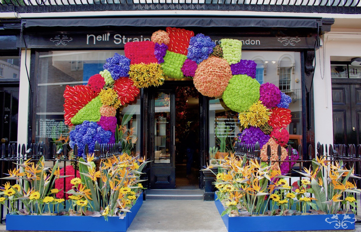 Neill Strain Floral Couture was awarded Overall Best Floral Display in Belgravia In Bloom with his Frida Kahlo inspired design.