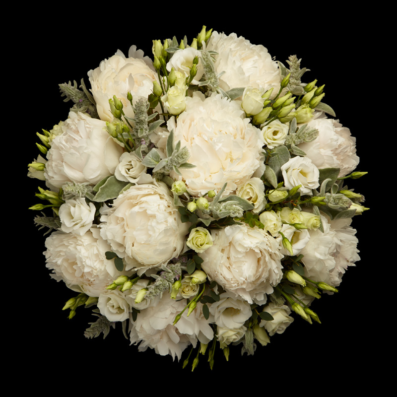 White Peonies Neill Strain Floral Couture