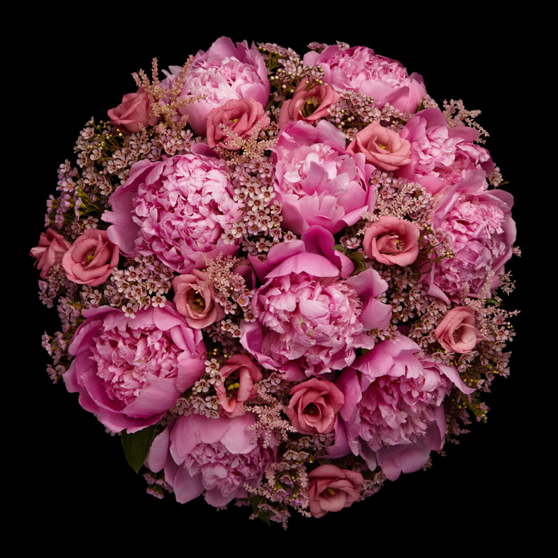 Pink Peonies by Neill Strain Floral Couture