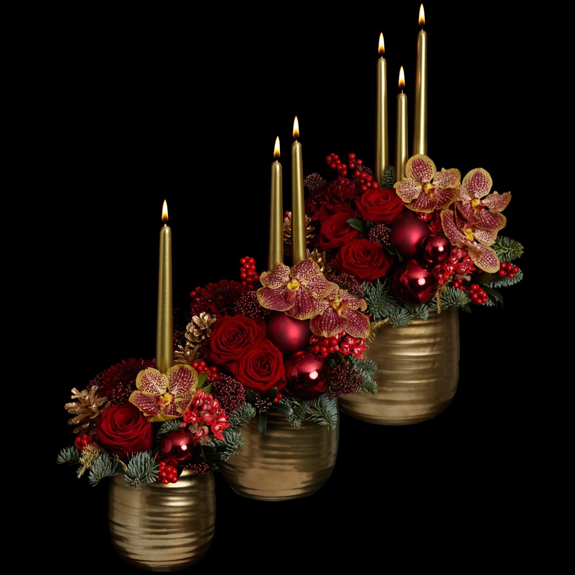 Red Rejoice Petite Couture with candles.jpg