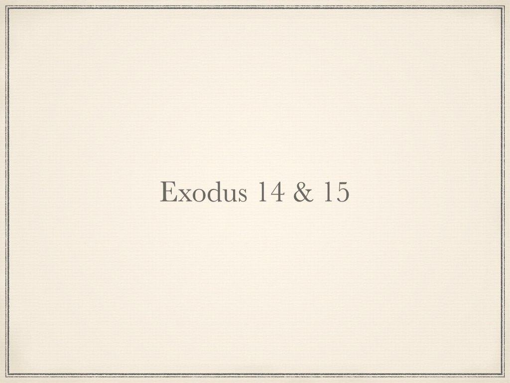 How do we study the Bible? P4.004.jpg