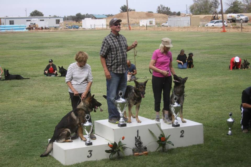 Colleen with Louie, Joel with Arna, Deleta with Lobo (left to right)