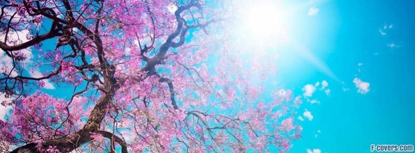spring-sunshine-facebook-cover-timeline-banner-for-fb.jpg