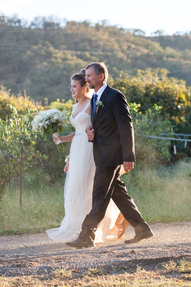 wedding-at-capay-organic-farms-sacramento-photographer-10.jpg