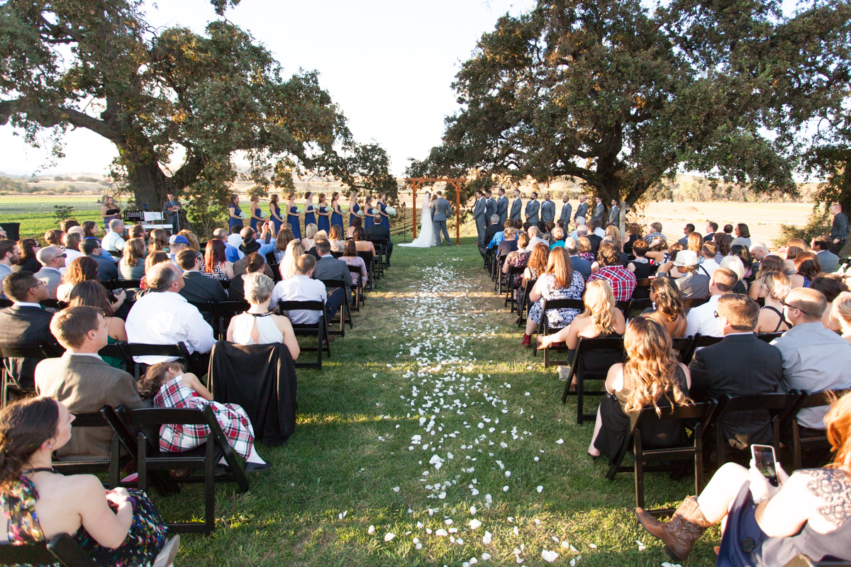 wedding-at-capay-organic-farms-sacramento-photographer-11.jpg